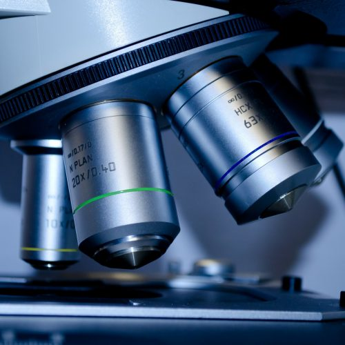 ¿Qué son las células madre?